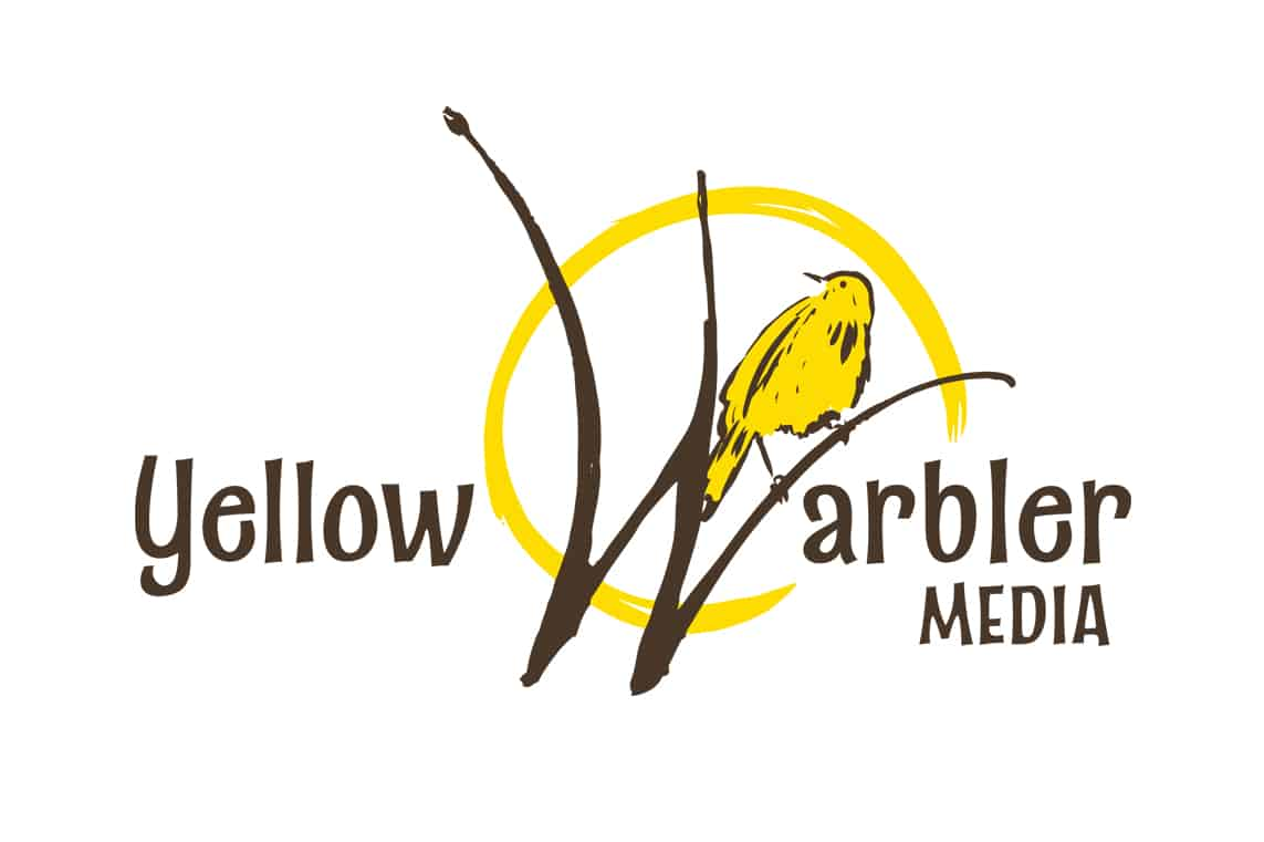 Yellow Warbler Media